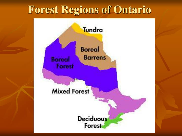 Forest Regions of Ontario
