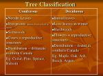 tree classification