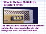 what is photons multiplicity detector pmd