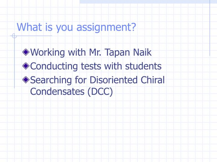 What is you assignment?