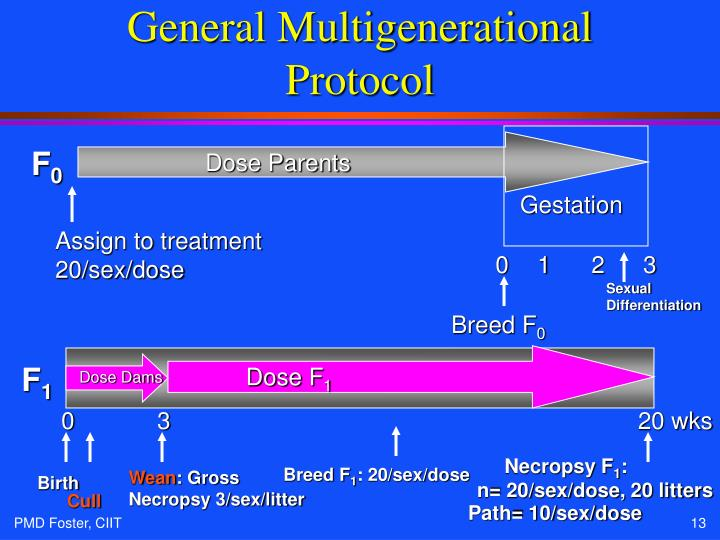 General Multigenerational Protocol