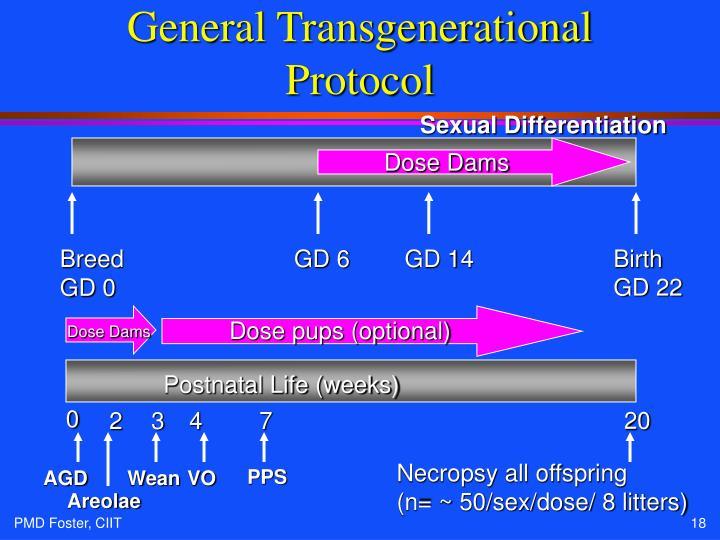 General Transgenerational Protocol