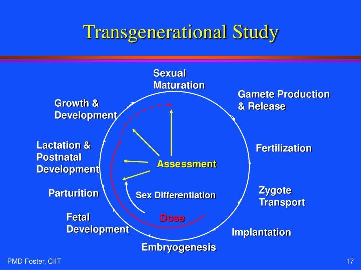 Transgenerational Study