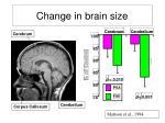 change in brain size