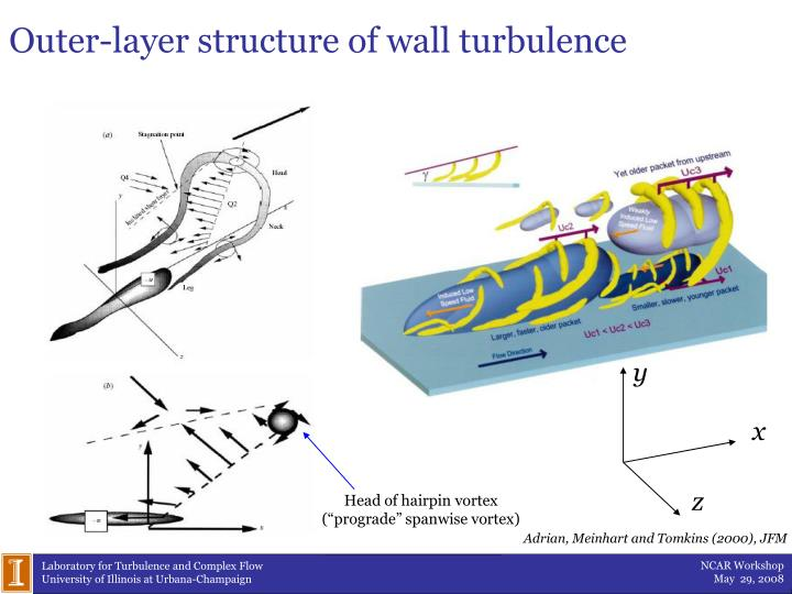 Outer-layer structure of wall turbulence