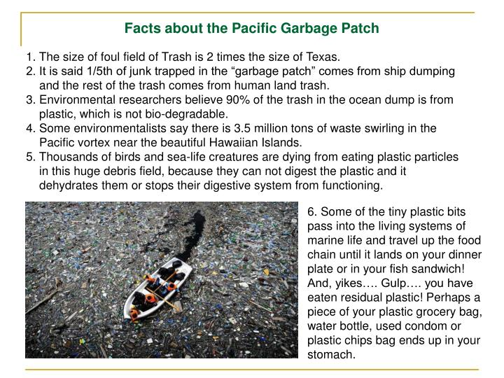 Facts about the Pacific Garbage Patch