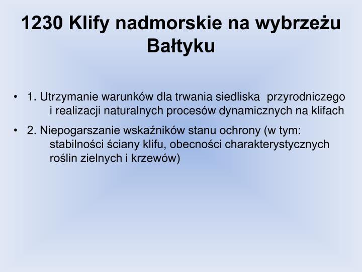 1230 Klify nadmorskie na wybrzeżu Bałtyku