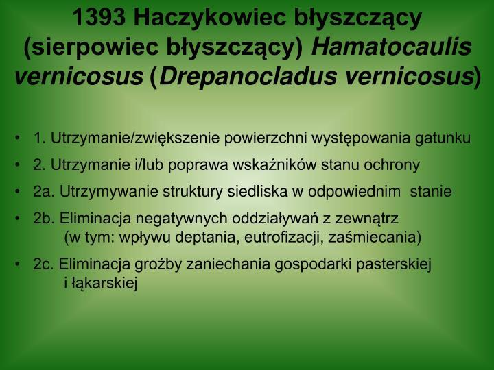 1393 Haczykowiec błyszczący (sierpowiec błyszczący)
