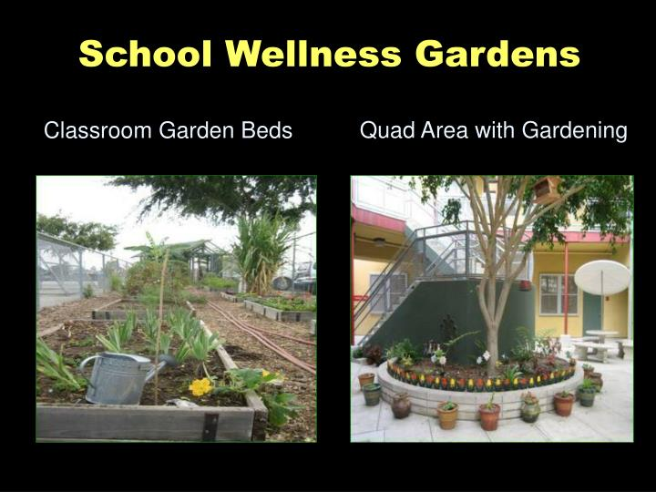School Wellness Gardens
