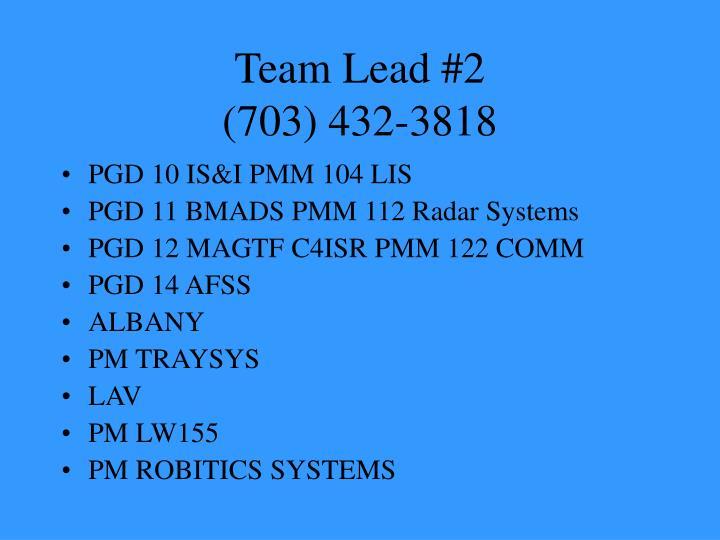 Team Lead #2