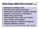 what does 2009 plan include