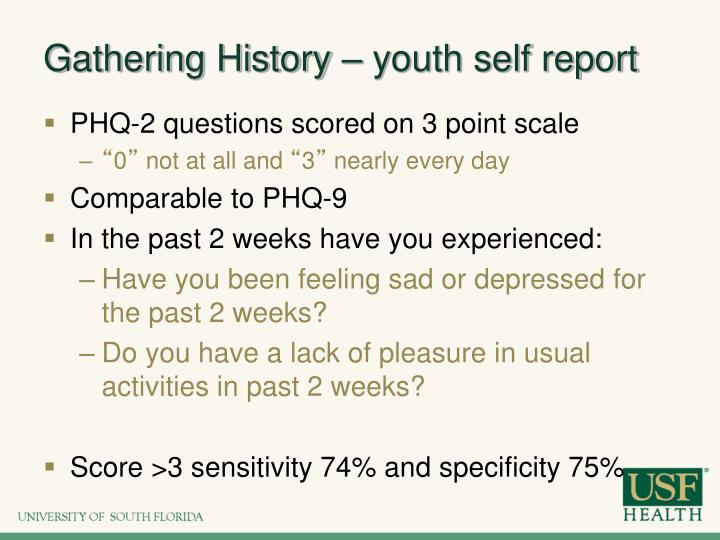 Gathering History – youth self report