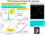 the future of charm sl physics