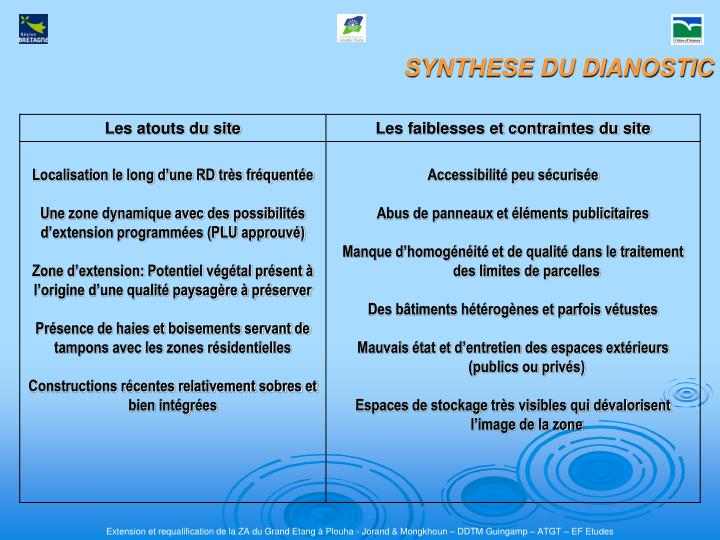 SYNTHESE DU DIANOSTIC
