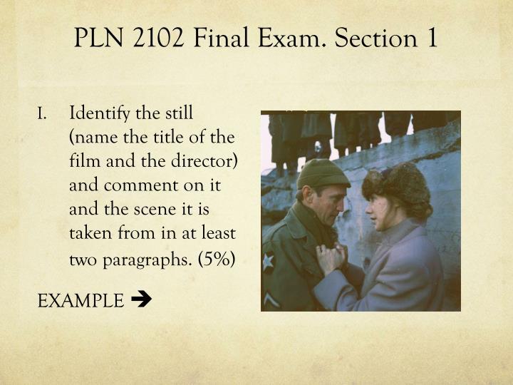 PLN 2102 Final Exam. Section 1