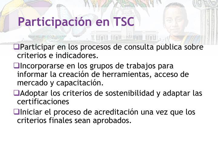 Participación en TSC