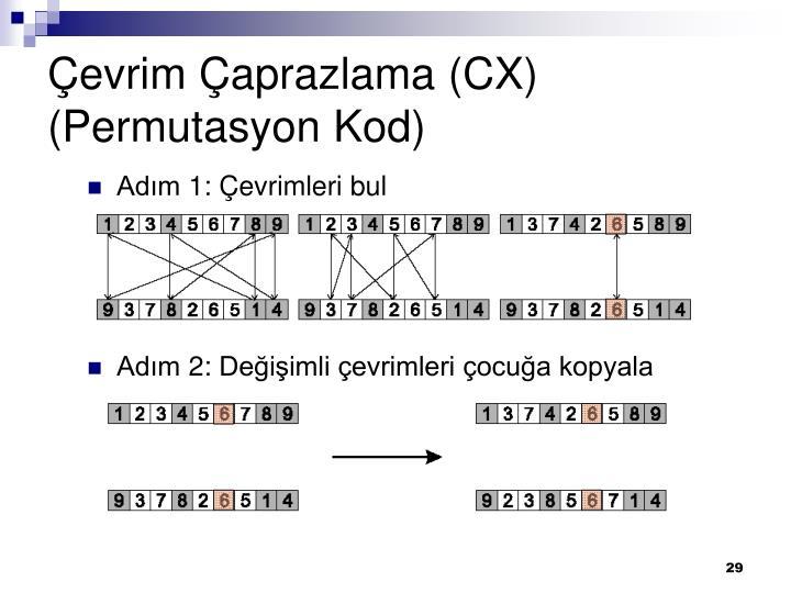 Çevrim Çaprazlama (CX) (Permutasyon Kod)