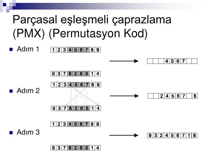 Parçasal eşleşmeli çaprazlama (PMX) (Permutasyon Kod)