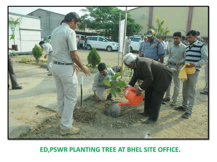 ED,PSWR PLANTING TREE AT BHEL SITE OFFICE.