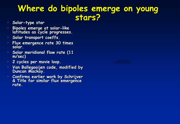Where do bipoles emerge on young stars?