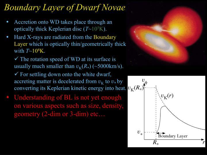 Boundary Layer of Dwarf Novae