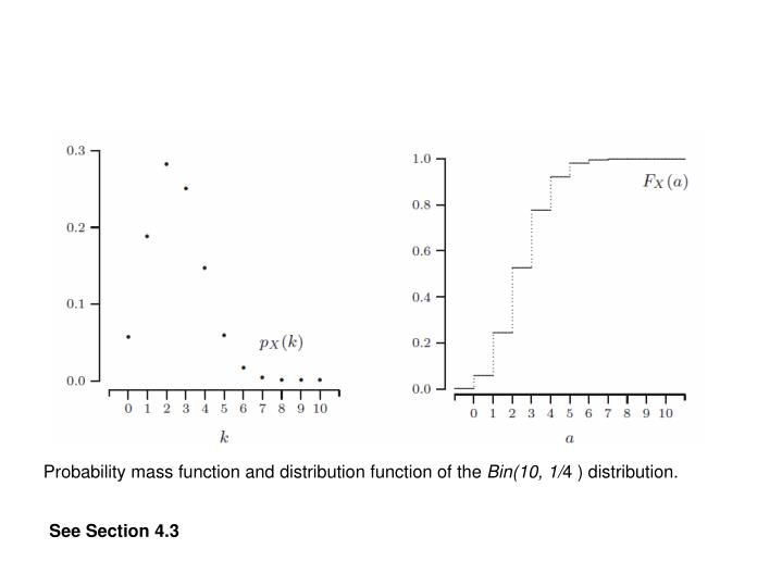 Probability mass function and distribution function of the