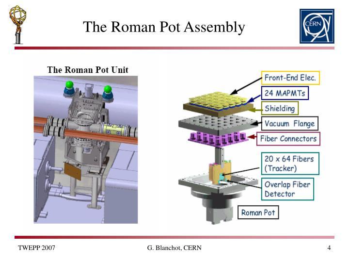 The Roman Pot Assembly