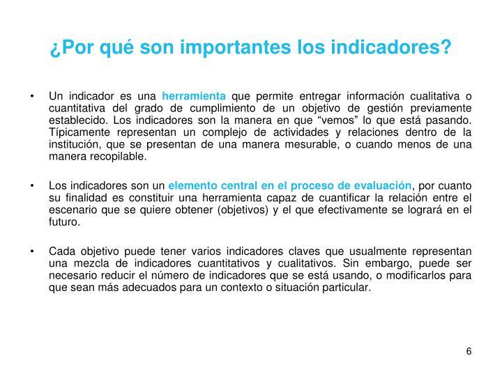 ¿Por qué son importantes los indicadores?