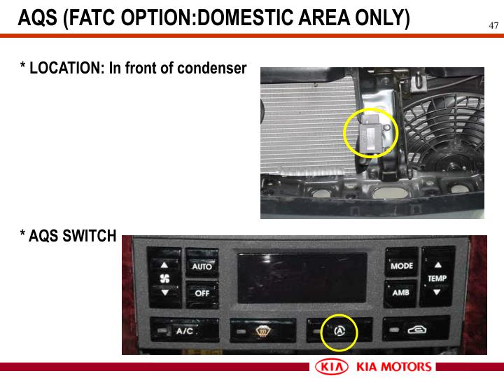 AQS (FATC OPTION:DOMESTIC AREA ONLY)