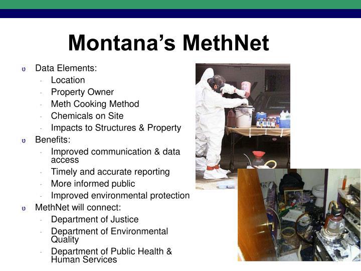 Montana's MethNet
