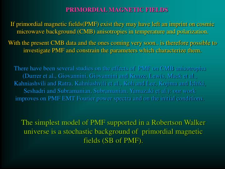 PRIMORDIAL MAGNETIC FIELDS