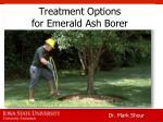 treatment options for emerald ash borer