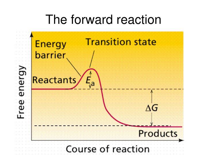 The forward reaction