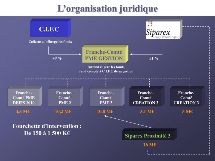 L'organisation juridique