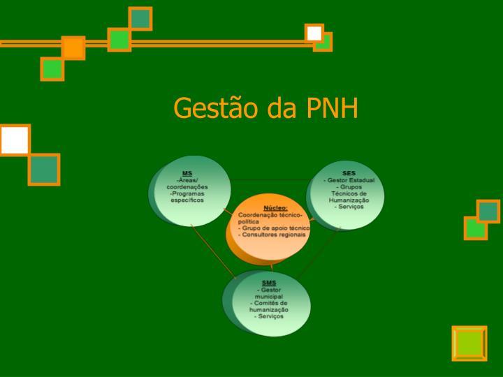 Gestão da PNH