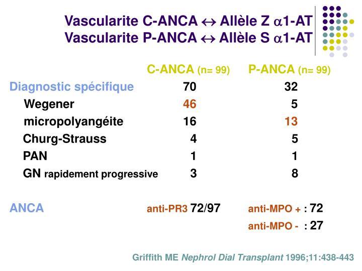 Vascularite C-ANCA  Allèle Z 1-AT