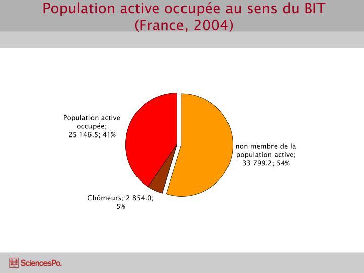 Population active occupée au sens du BIT (France, 2004)