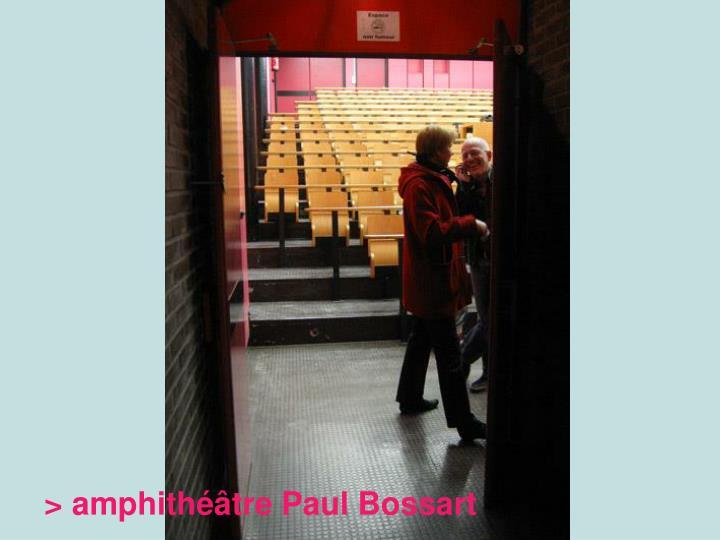 > amphithéâtre Paul Bossart