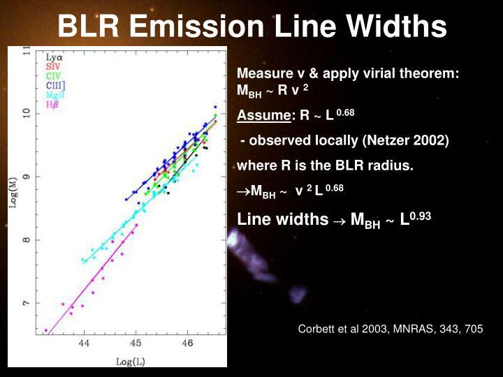 BLR Emission Line Widths