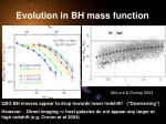 evolution in bh mass function