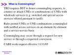 what is commingling