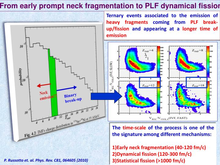 From early prompt neck fragmentation to PLF dynamical fission