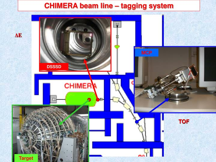 CHIMERA beam line – tagging system