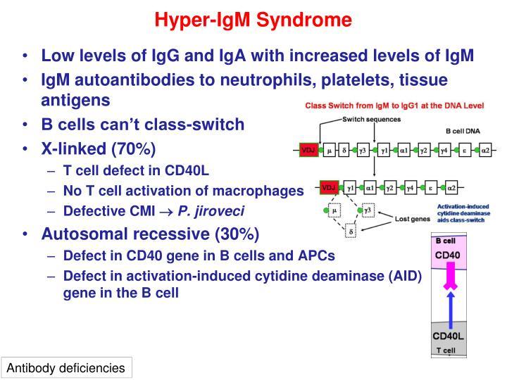 Hyper-IgM Syndrome