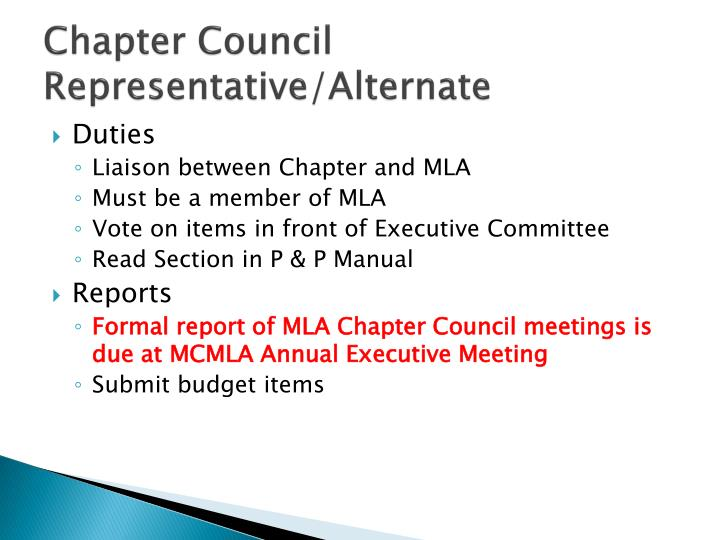 Chapter Council Representative/Alternate