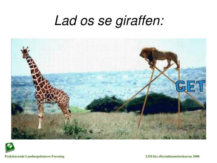 Lad os se giraffen: