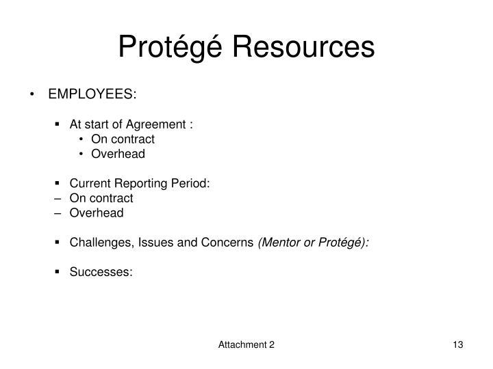 Protégé Resources