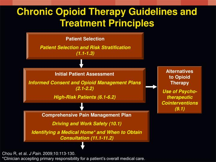 Chronic Opioid Therapy Guidelines and Treatment Principles