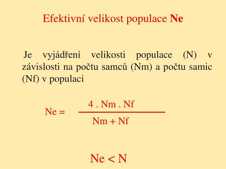 Efektivní velikost populace