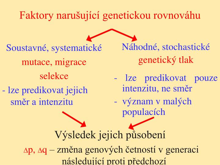 Faktory narušující genetickou rovnováhu